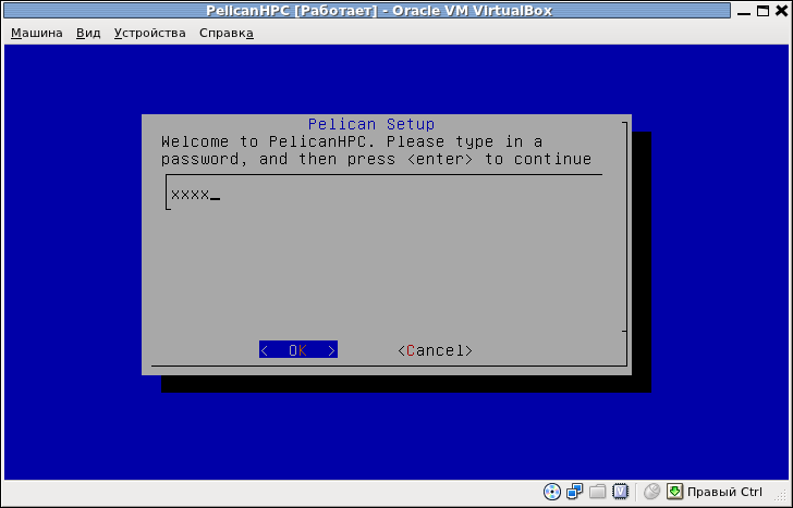 PelicanHPC [Работает] - Oracle VM VirtualBox_005.png